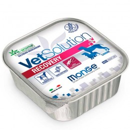 Recoveriy 150 Gr - Vet Solution