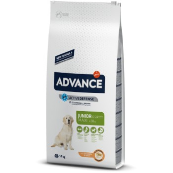 Pienso para perros Advance Maxi Junior Chicken & Rice 14 Kg - Affinity