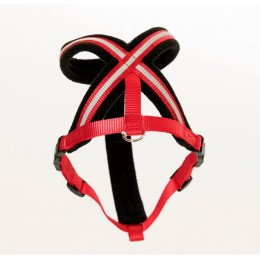 Comfy Harness Red Xs - The Company of animals