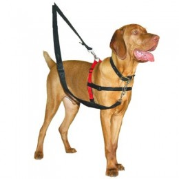 Halti Harness Medium - The Company of animals