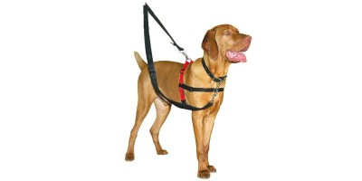 Arnés de adiestramiento para perros Halti Harness Talla M - The Company of animals